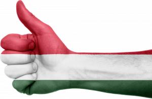 Mađarski jezik. Kurs mađarskog jezika.